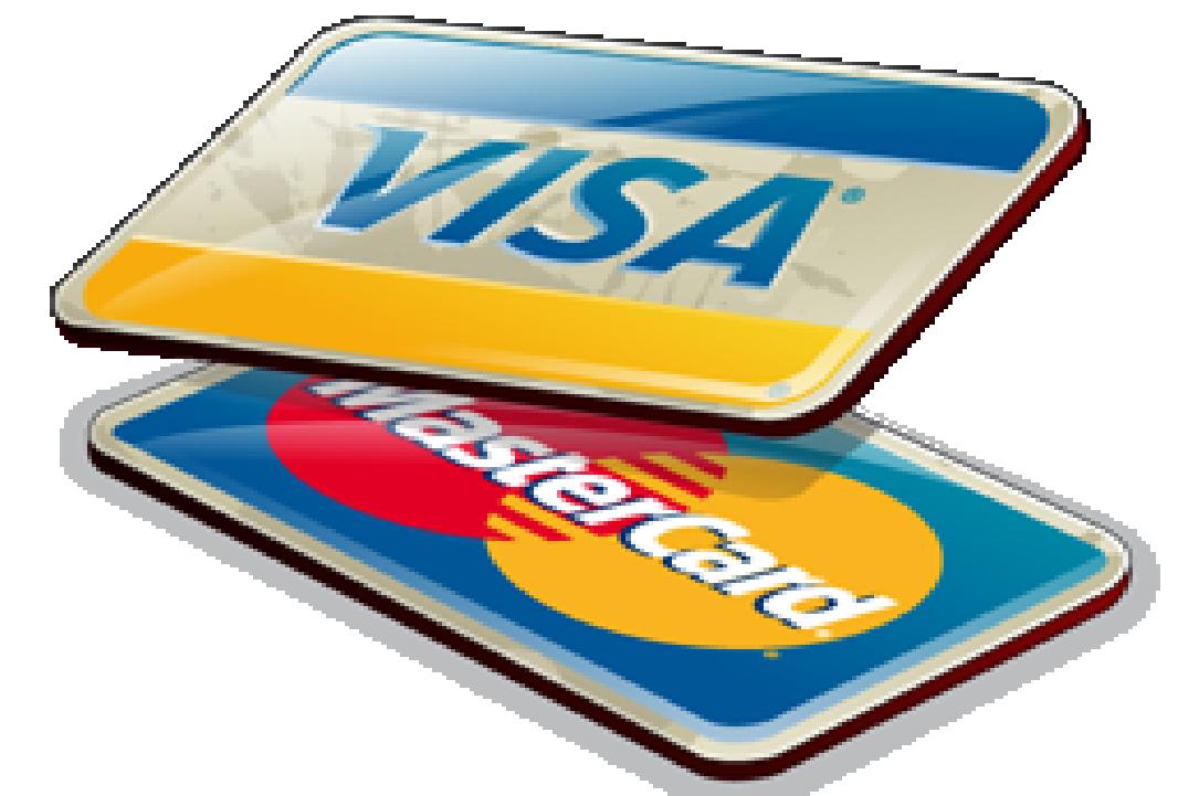 <ul><li>Наличными в магазине</li><li>Безналичный расчёт (с/без НДС)</li><li>Перевод на банковскую карту</li></ul>